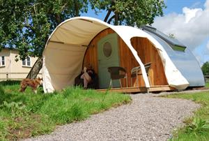 Middlewick's Glamping Cabins